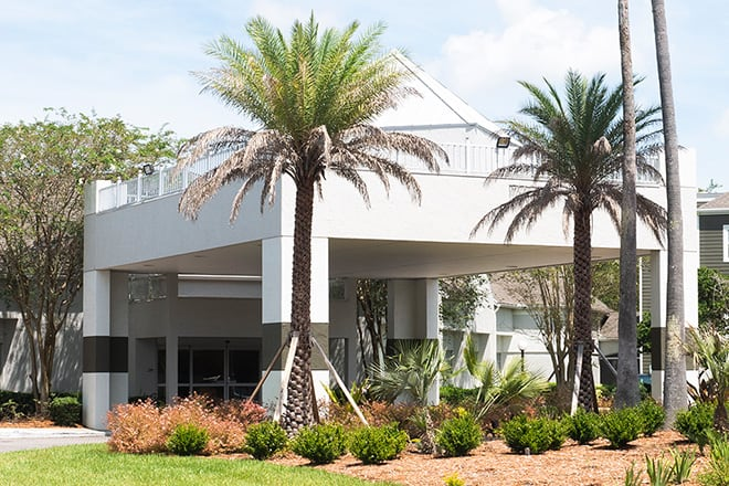 The exterior of Brookdale Southside is white. It features a rooftop patio. Beautiful palm trees adorn the lawn.